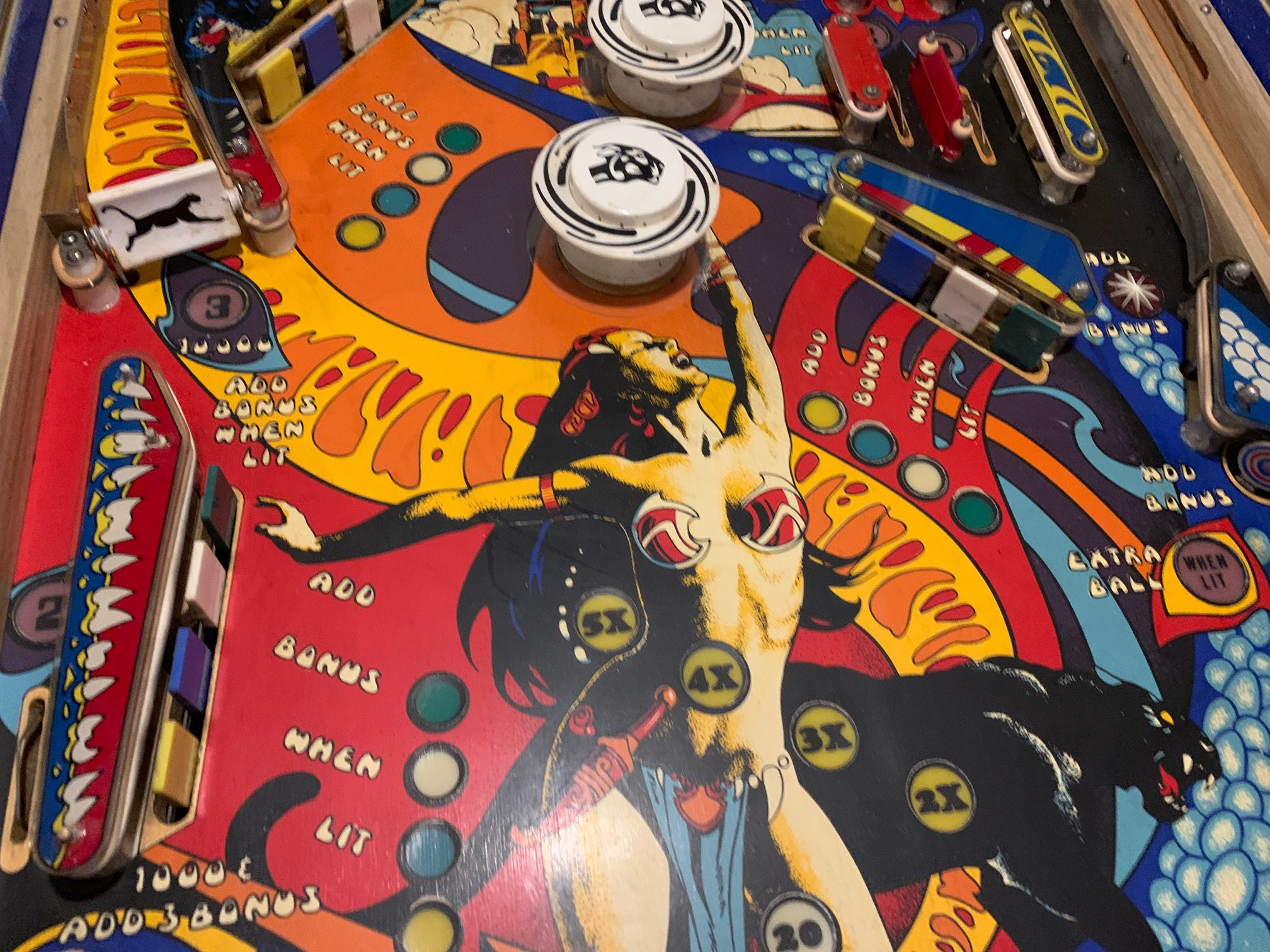 Panthera playfield before cleaning